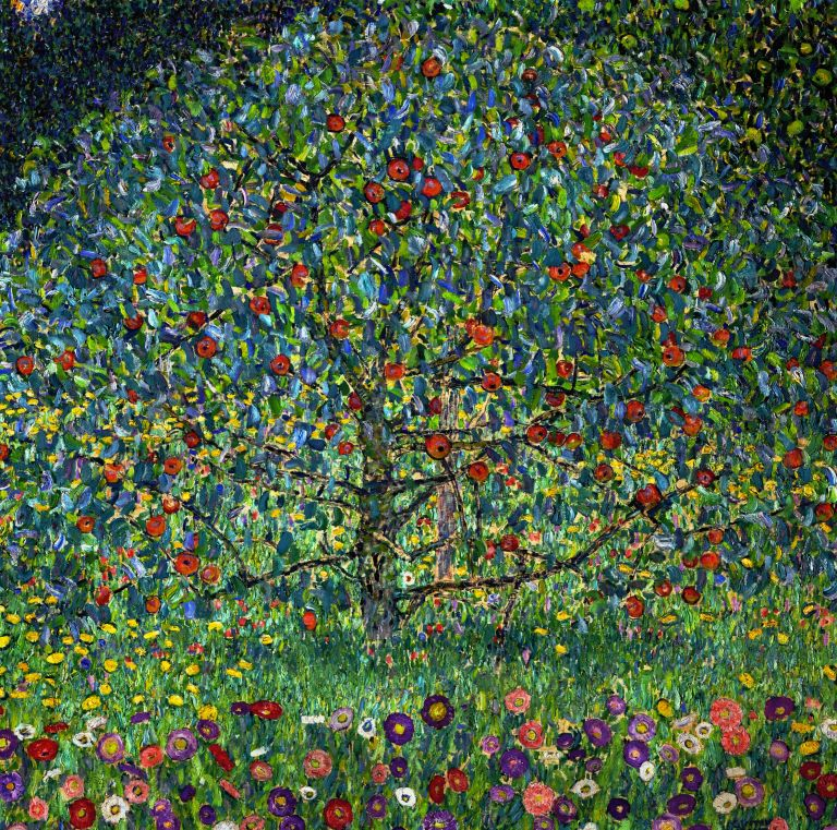 apple-tree-image-xl